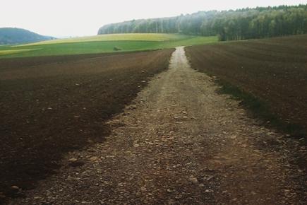 Forst- & Flurwegebau