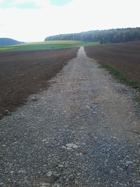 neu angelegter Flurweg